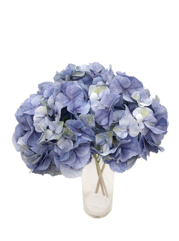 Blue HydrangeasBlue Hydrangeas (Pollyanna)