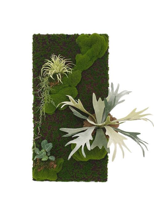 Artificial Staghorn Fern Moss Panel Display (Pollyanna)
