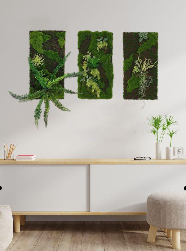 Moss Wall (Pollyanna)