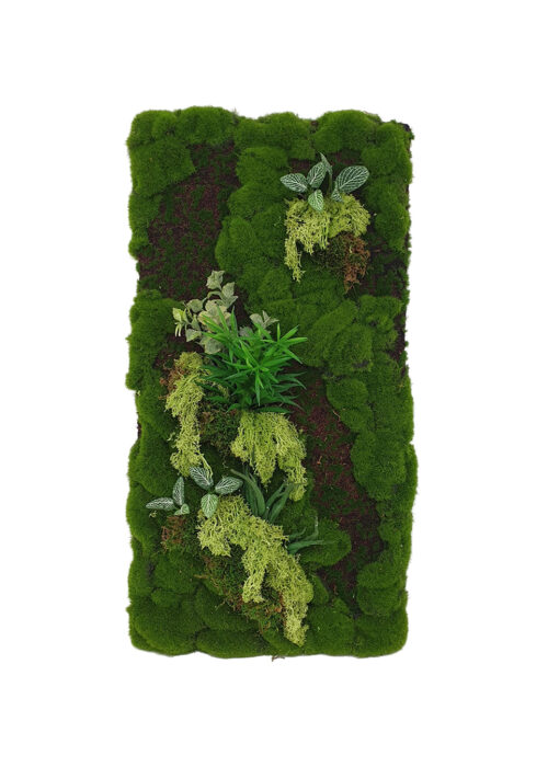 Reindeer Moss Panel Display (Pollyanna)