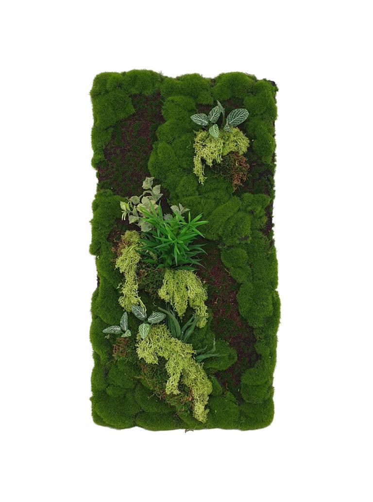 Reindeer Moss Panel Display (Pollyanna)