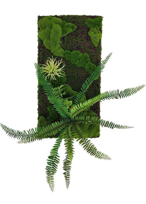 Artificial Fern Moss Panel Display (Pollyanna)
